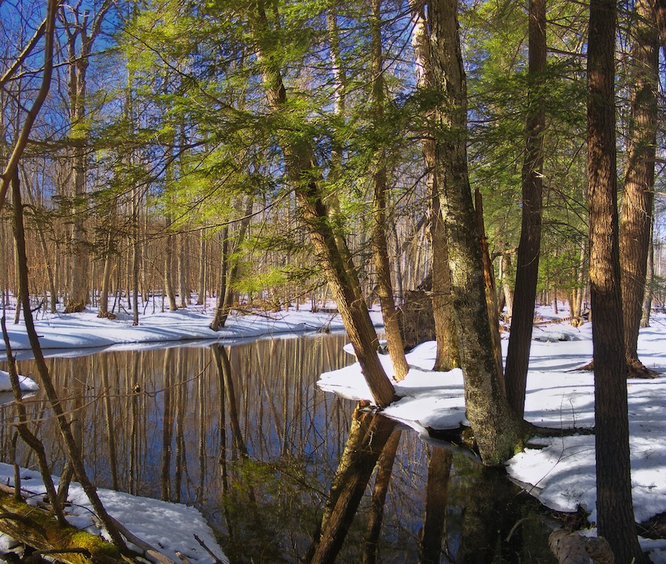 4412737672_c5c0b0d095_b Spruce Run in winter by Nicholas Tonelli